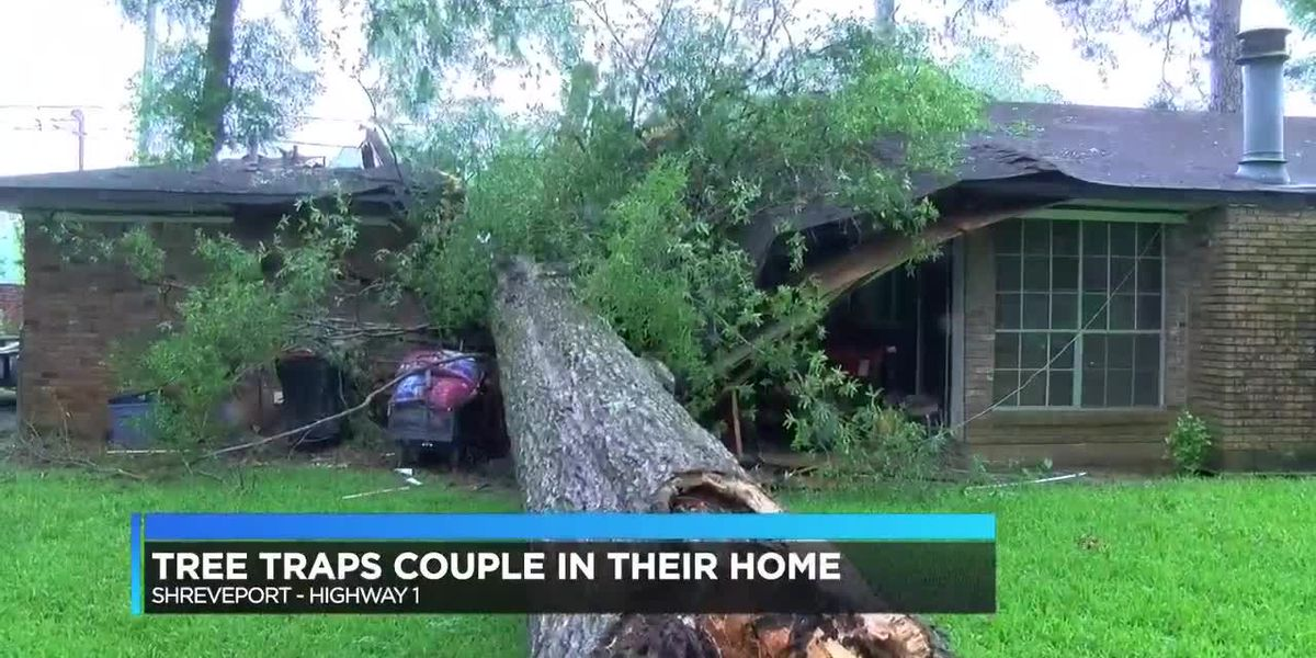Tree traps Shreveport couple in their home