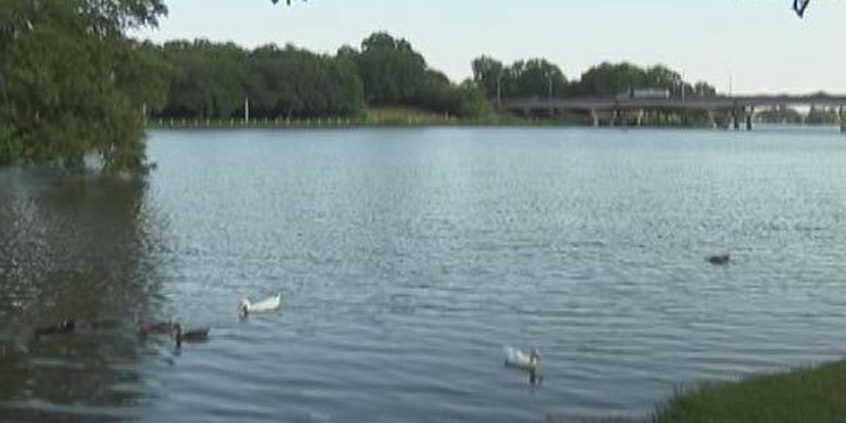 Report says deepening LSU lakes good for the environment