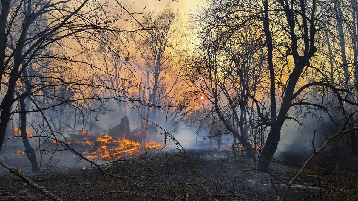 Ukraine battles forest fires near Chernobyl