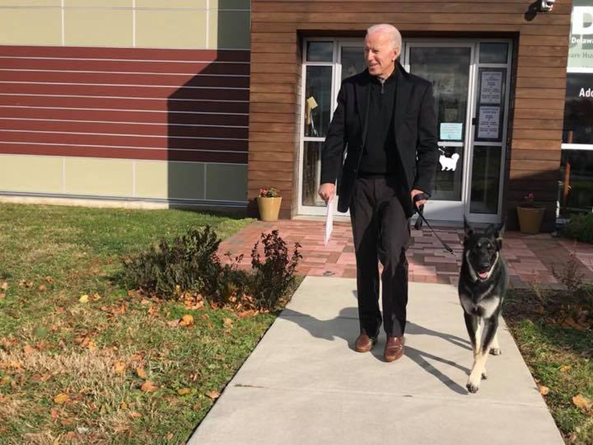 2020 walking or running mate? Former Vice President Joe Biden adopts German Shepherd from animal shelter