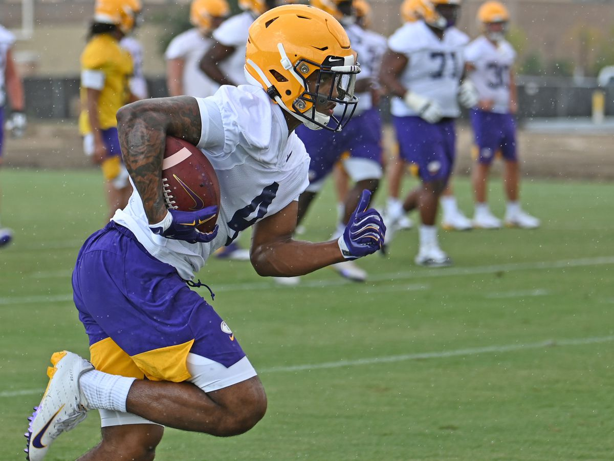 LSU's 2 freshman running backs look to contribute this season