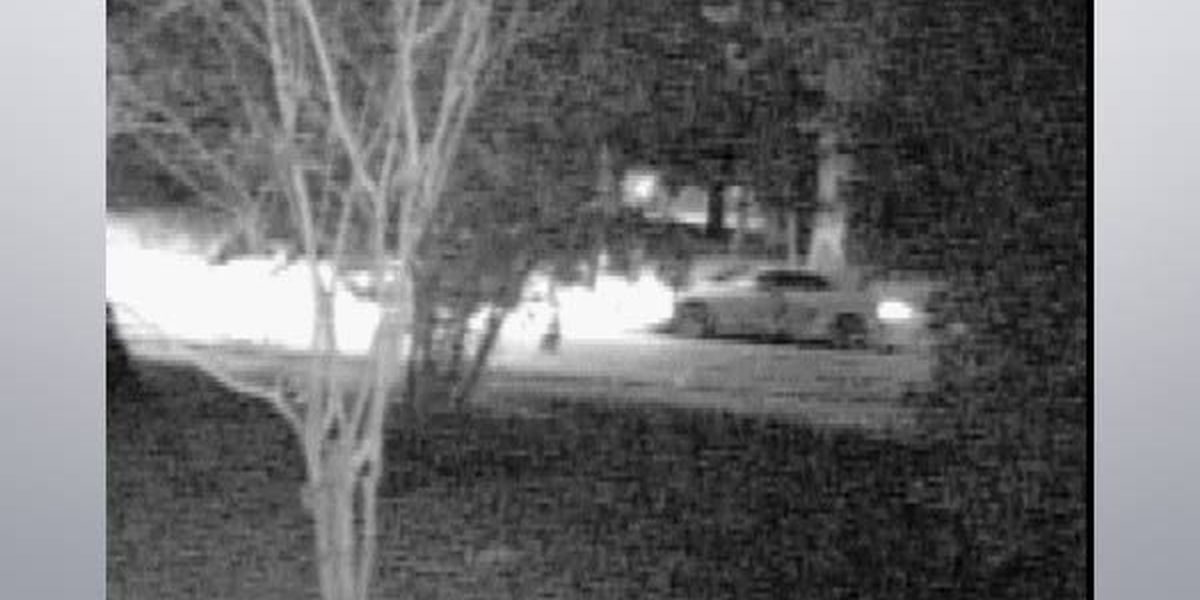 Officials release image of vehicle involved in drive-by shooting that left 7-yr-old dead