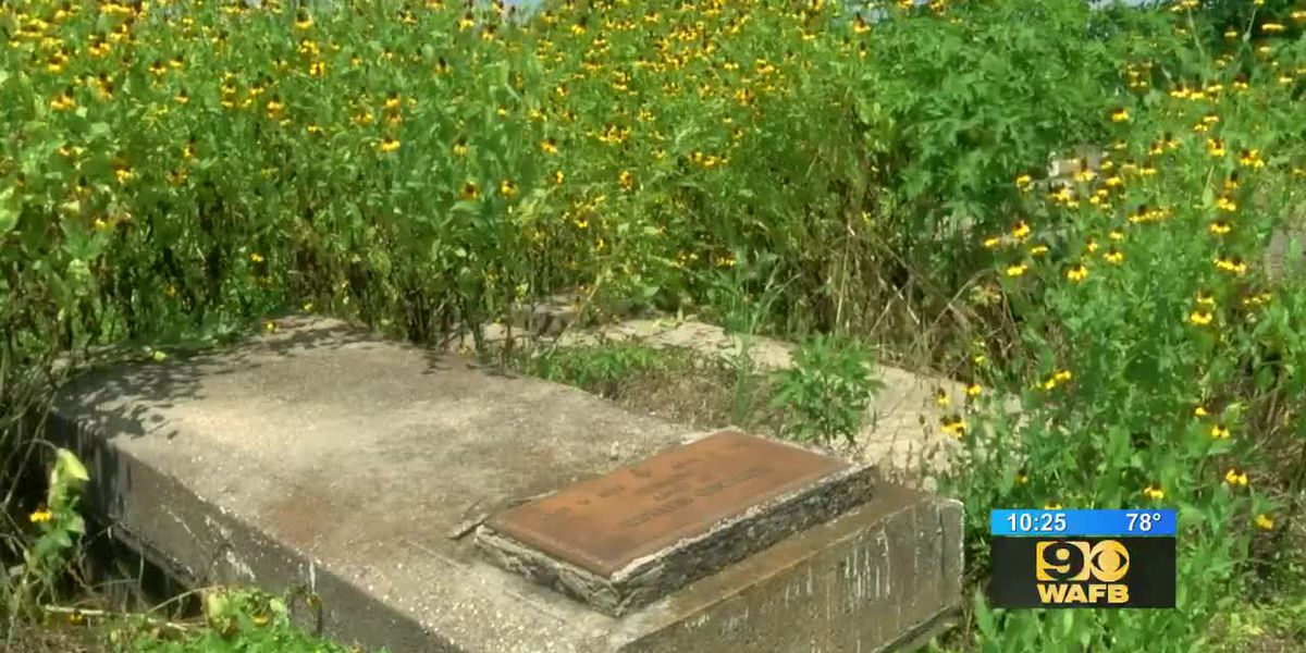 SHOWCASING LOUISIANA: Group works to uncover forgotten plantation cemeteries