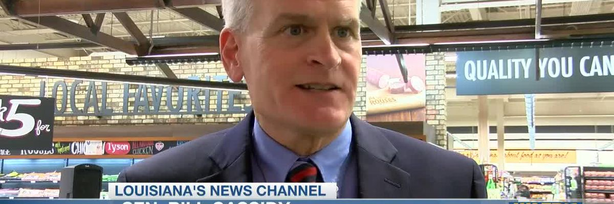 Sen. Bill Cassidy launches reelection campaign