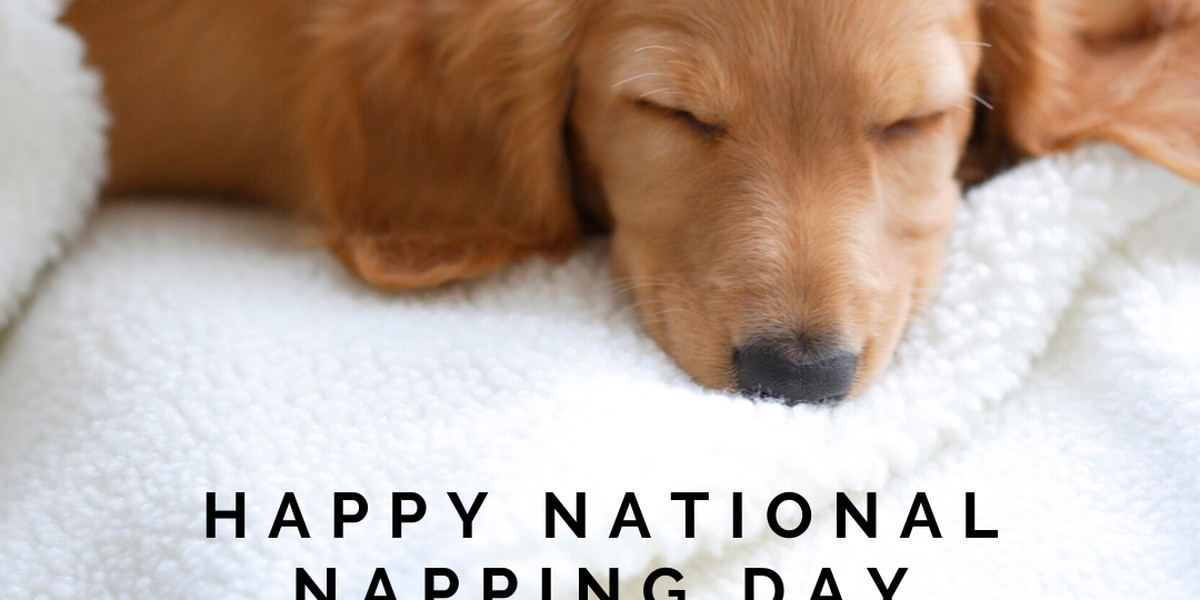 March 9 is National Napping Day
