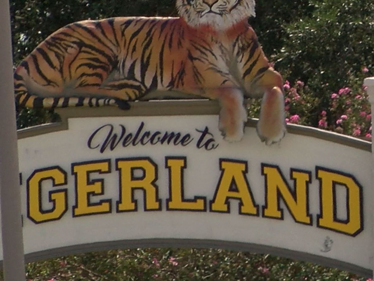 LSU students say area near Tigerland where sophomore was struck, killed by SUV is poorly lit