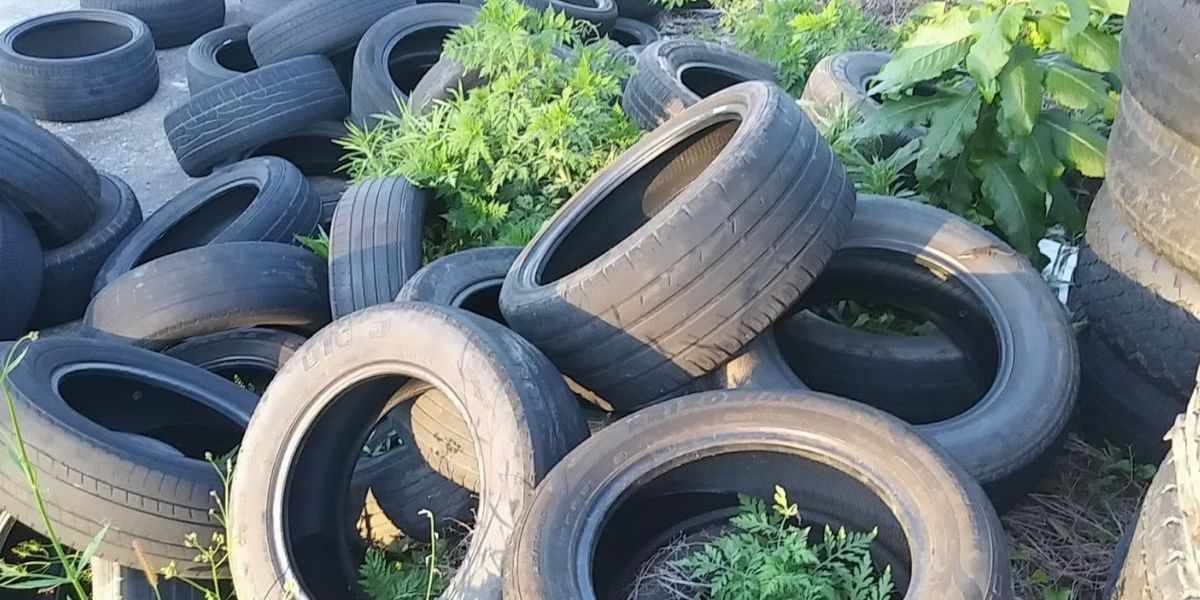 Tired of it: The ugly truth about waste tires