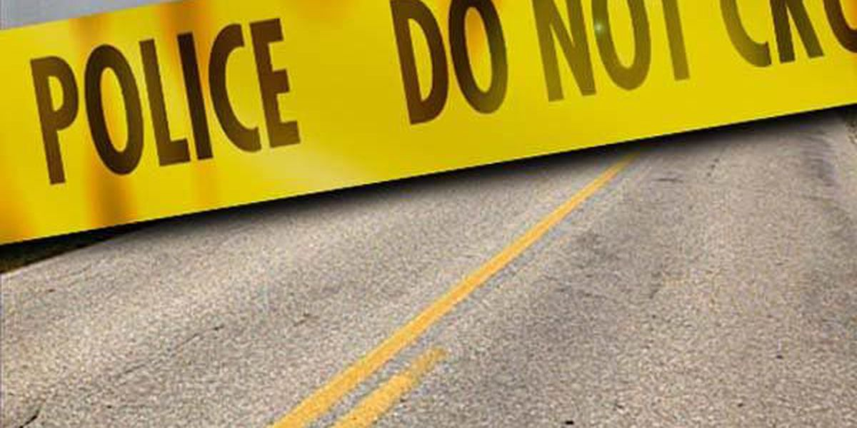Man dies after being struck by car trying to cross US 90