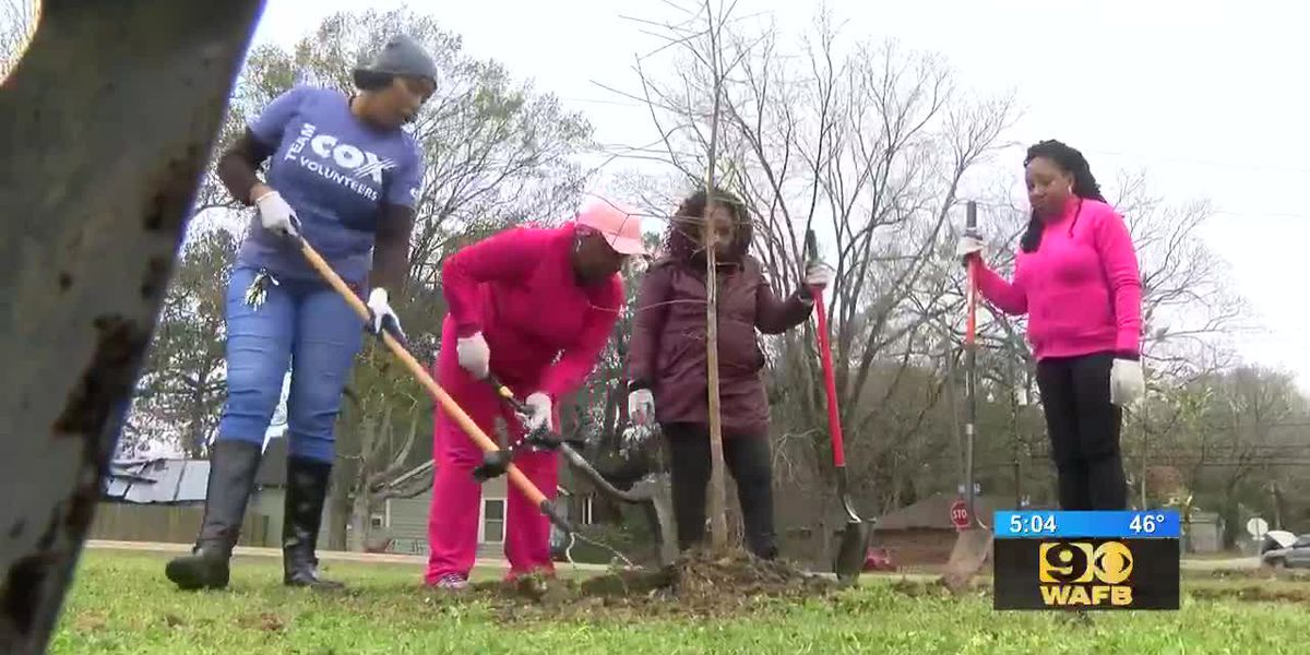 Volunteers with Baton Rouge Green plant trees on new school campus