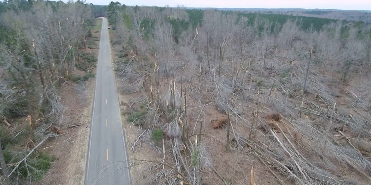 Drone footage shows EF-4 tornado's path of destruction in Lee County
