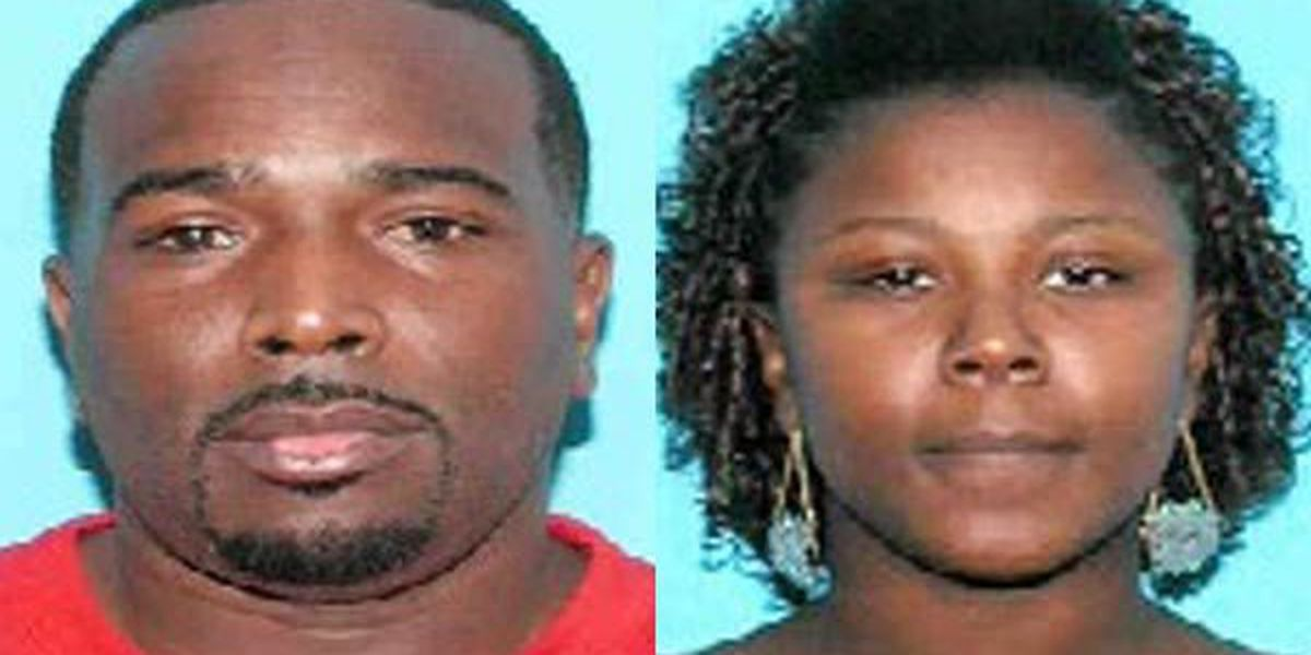 Man pleads guilty to taking murdered couple's stolen van across state lines