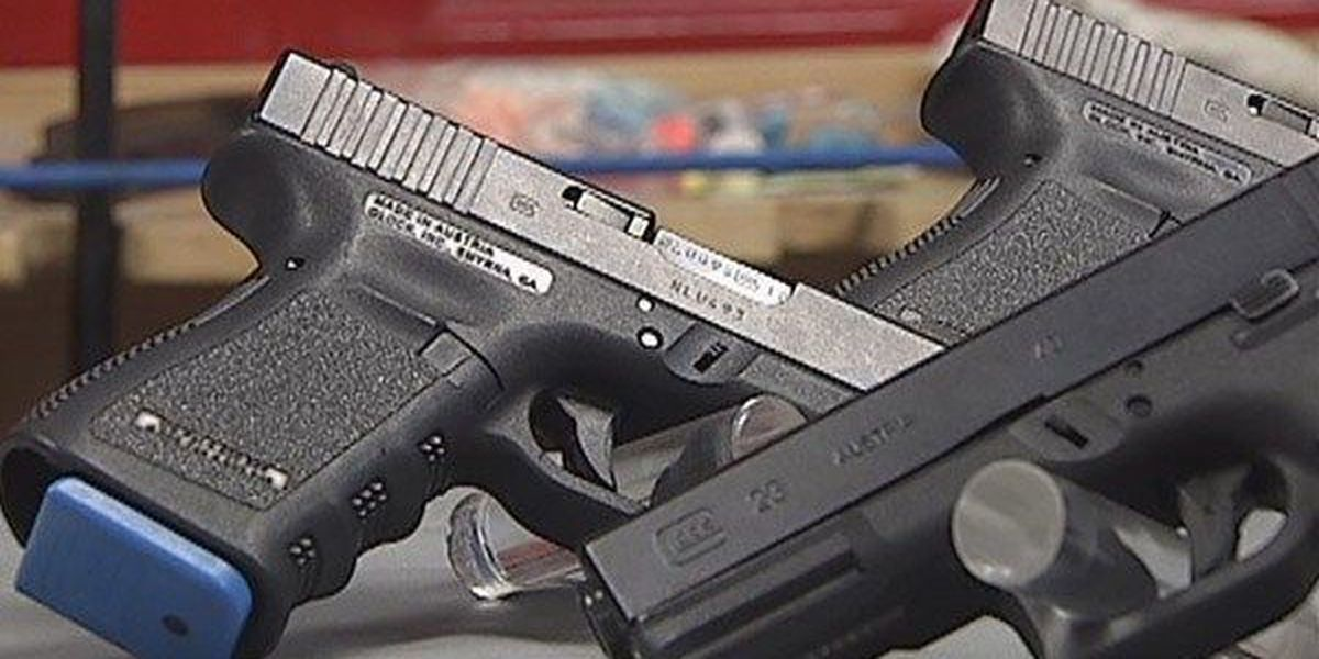 BRPD offers ladies only concealed handgun class