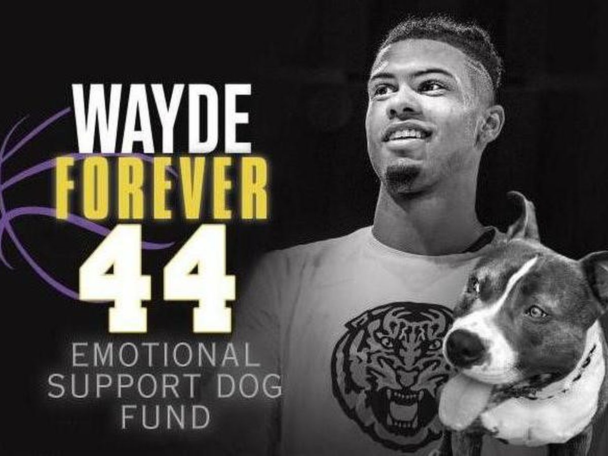 Family of Wayde Sims creates emotional support dog fund for LSU students