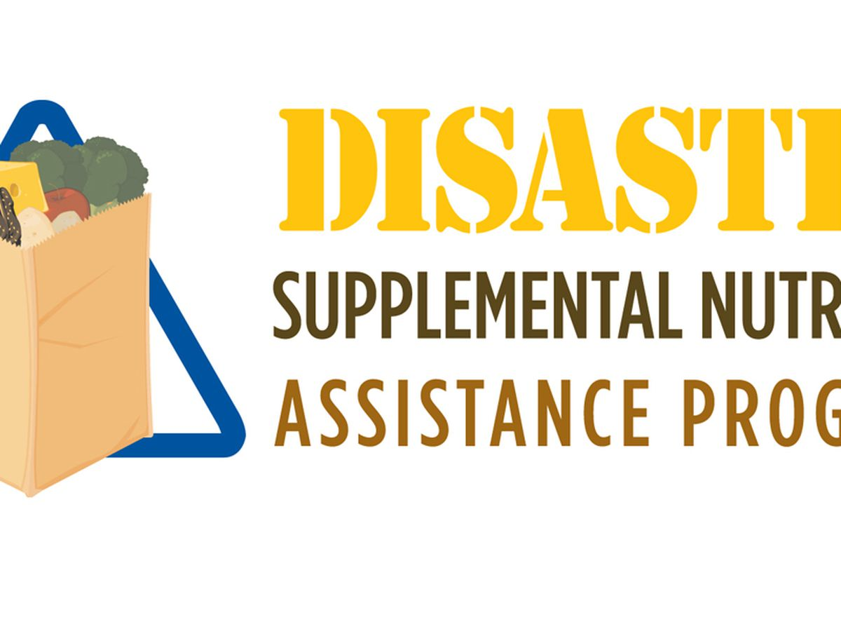 DSNAP now available for Hurricane Laura victims
