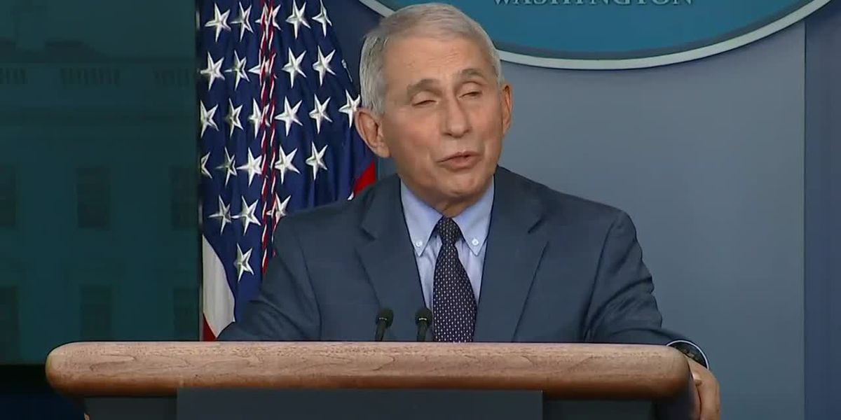 Thurs. Nov.19: White House Coronavirus Task Force press briefing