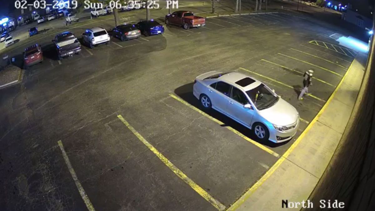 VIDEO: Police searching for vehicle burglary suspect