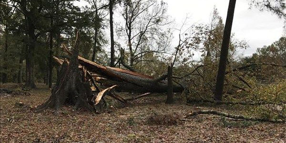 NWS confirms tornado caused damage in part of Ascension Parish