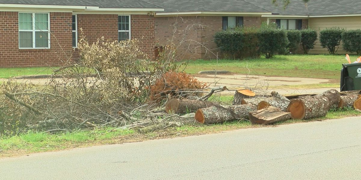 Storm debris removal begins Monday in EBR: What you need to do