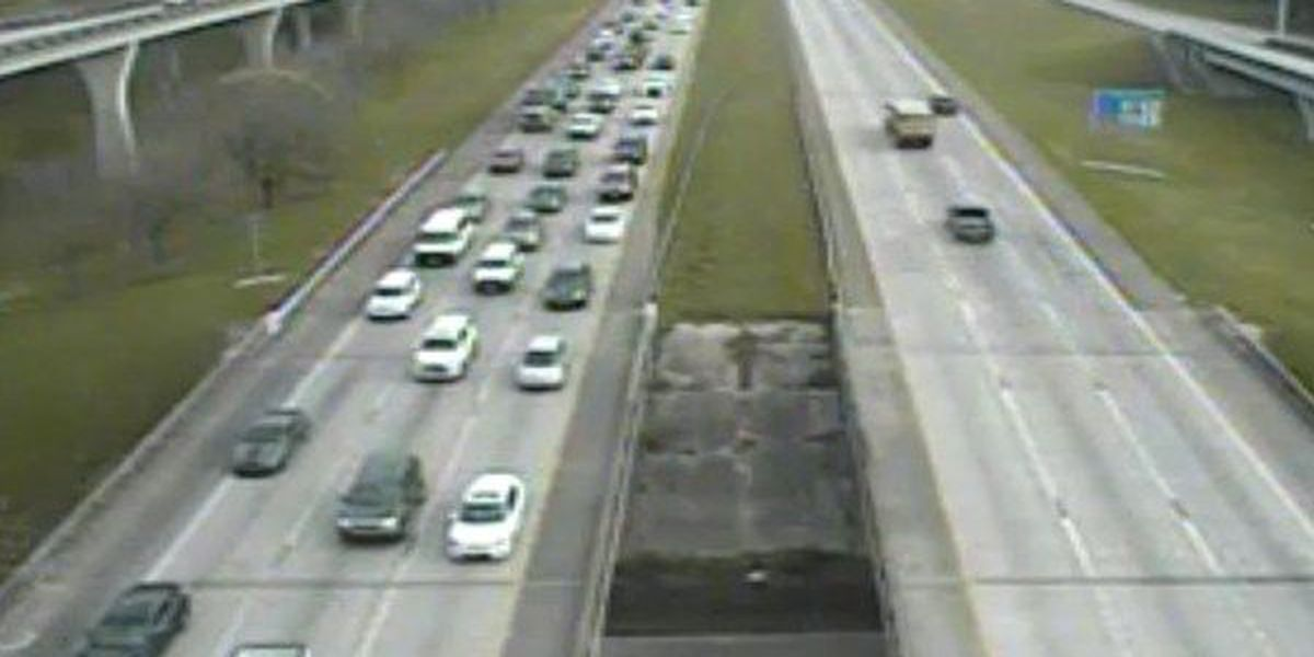 Dog wandering interstate caused major traffic delay for morning commuters