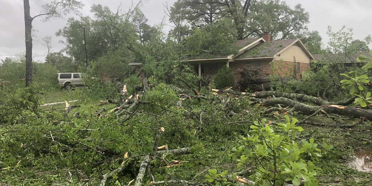 Saturday storms leave trail of damage across Shreveport