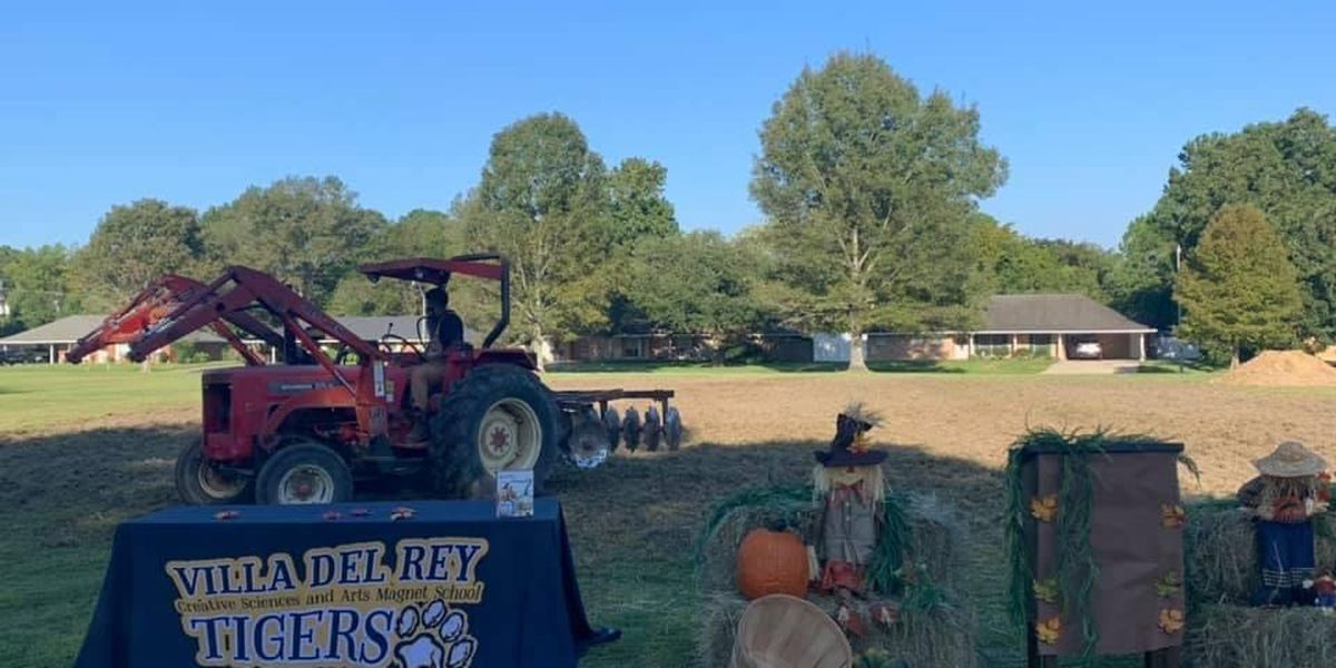 Kids at Villa Del Rey introduced to farming