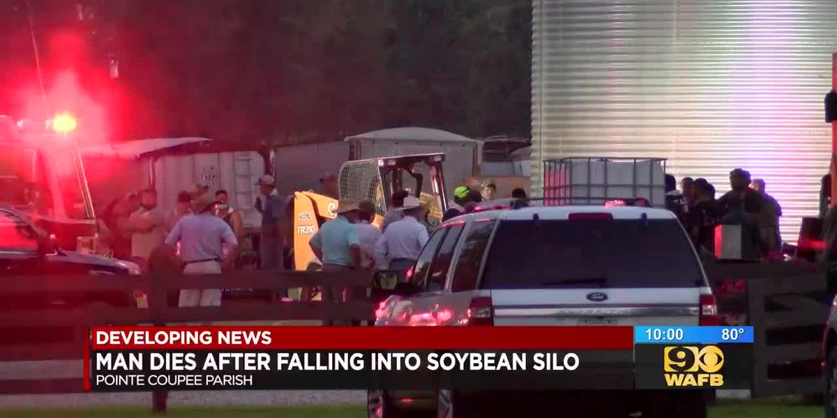 Man dies after falling into soybean silo