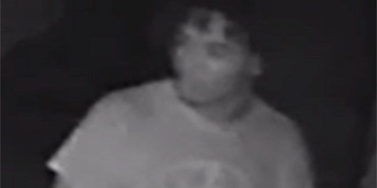 Surveillance image shows man wanted in Zachary vehicle break-ins