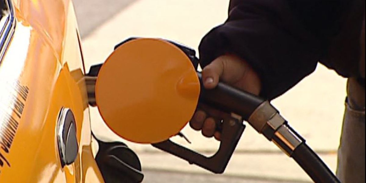 Gas prices predicted to remain steady in 2020