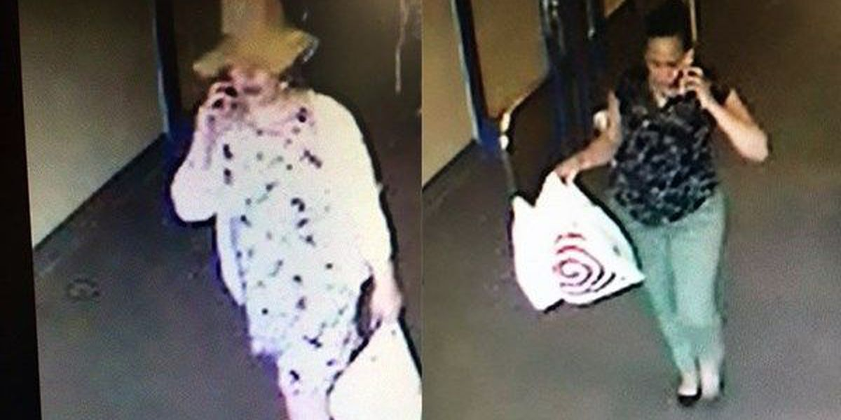 WANTED: Two women accused of using stolen credit cards to buy items at Target