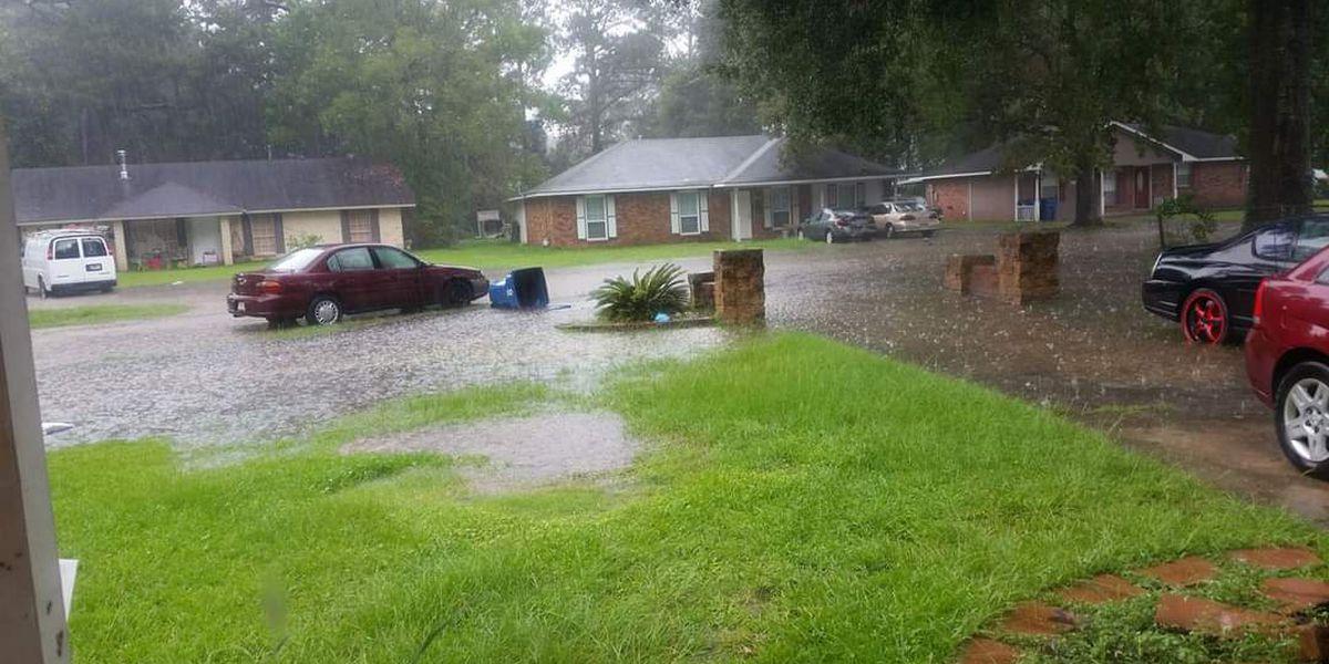 Denham Springs neighborhood continues to flood due to drainage system issues