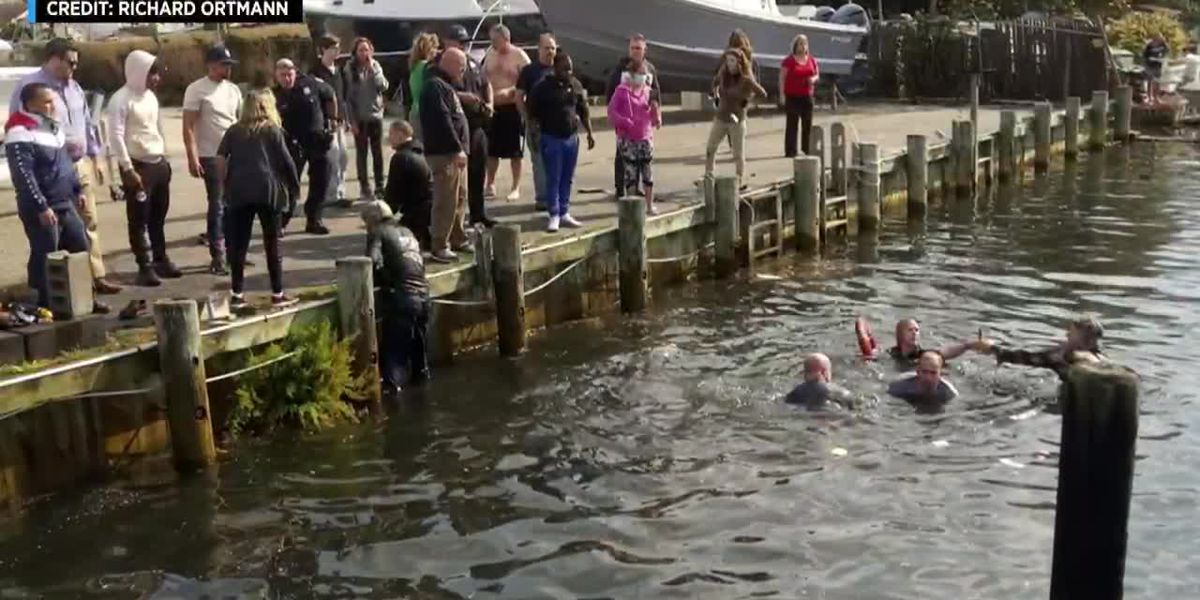 'An amazement': Good Samaritans jump into canal to save elderly couple from sinking car
