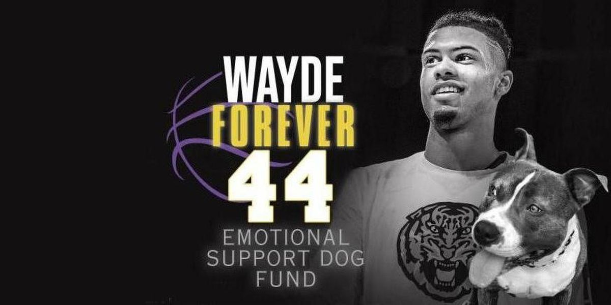 Tournament in honor of Wayde Sims set to raise money for emotional support dog fund