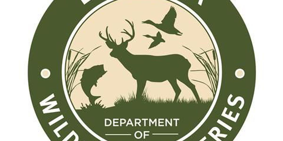 Louisiana Department of Wildlife and Fisheries offices closed to the public; residents can purchase/renew licenses online or mail