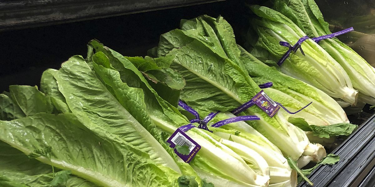 US officials: Don't eat romaine grown in Salinas, California