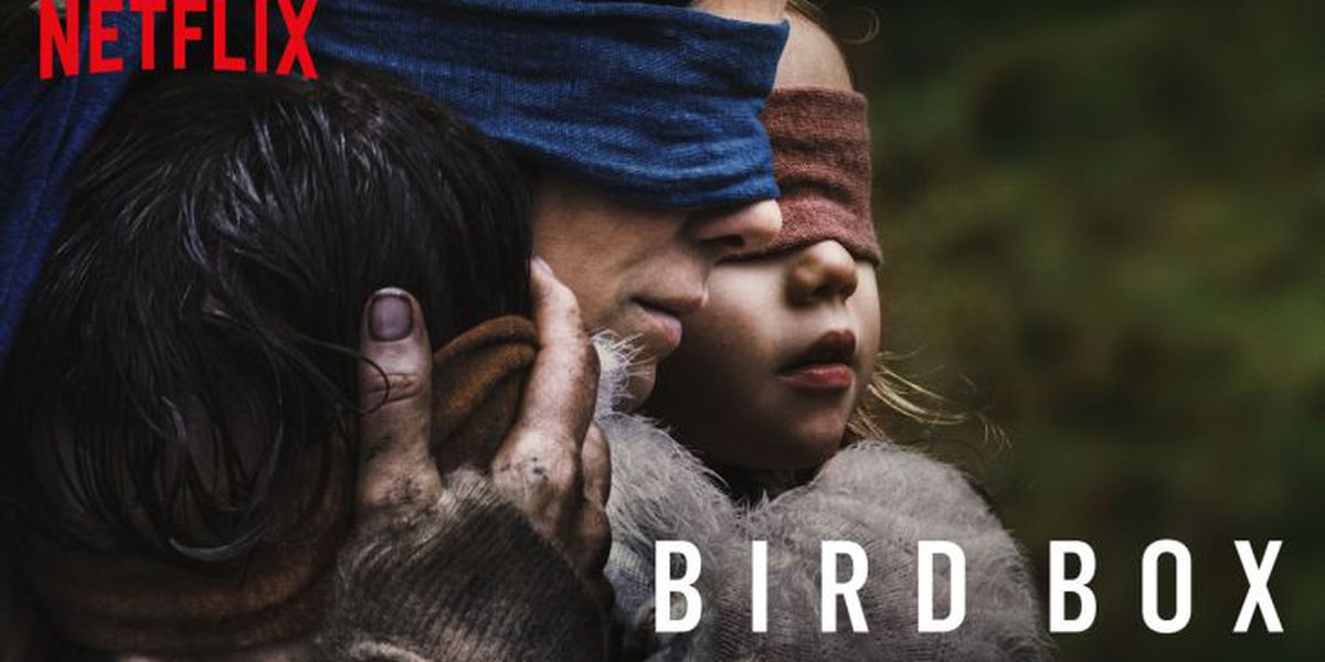 Bird Box inspires blindfolded fans in viral 'challenge'