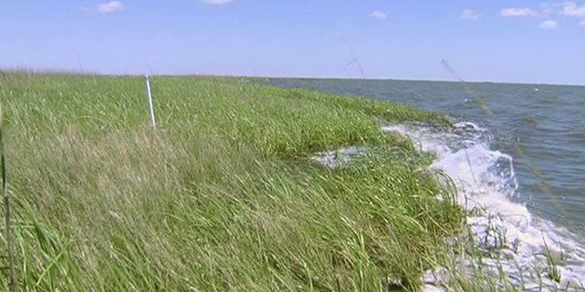 Environmental groups raise concerns about coastal restoration funds