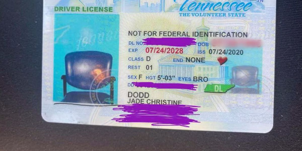 Woman renews license online, receives ID with picture of empty chair