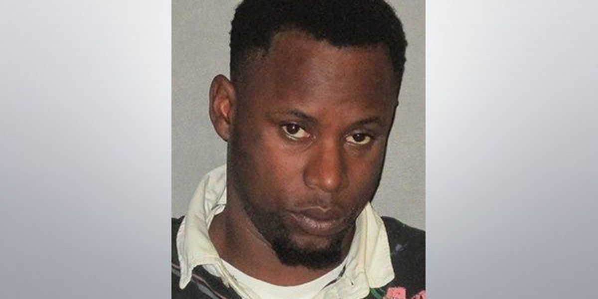 Baton Rouge man arrested for multiple burglaries at apartments under renovations
