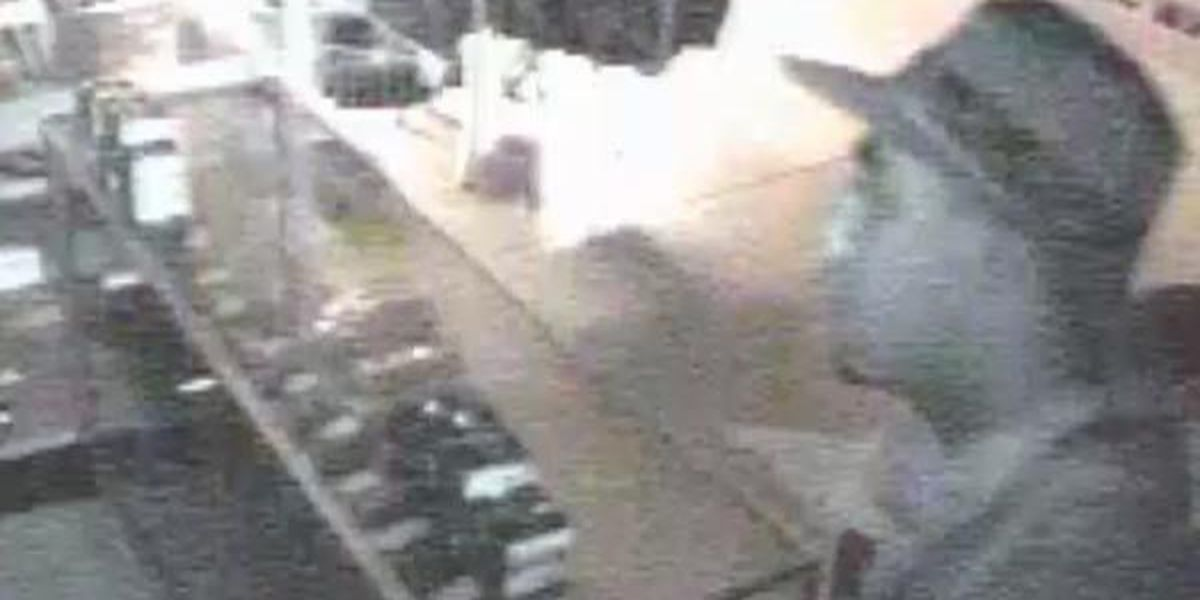 State Police seek suspect in gun theft at sporting goods store