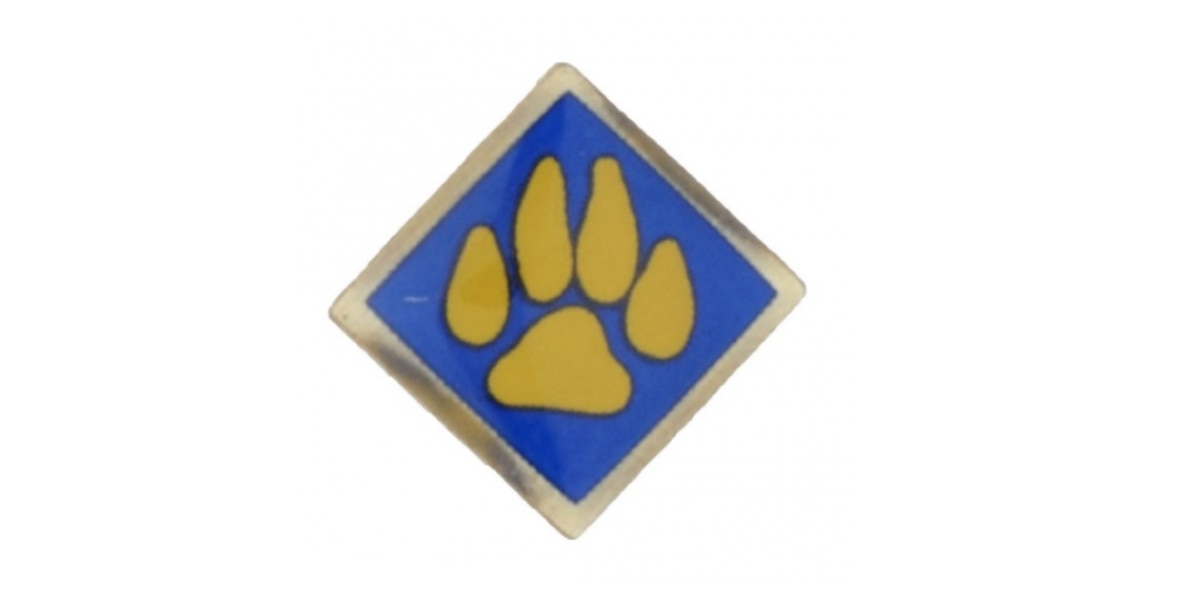 Boy Scouts of America's Cub Scout pins should be taken away from kids due to lead concerns