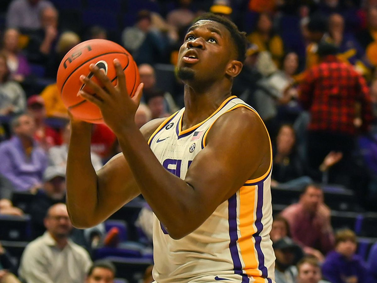 LSU sophomore Darius Days declares for NBA draft