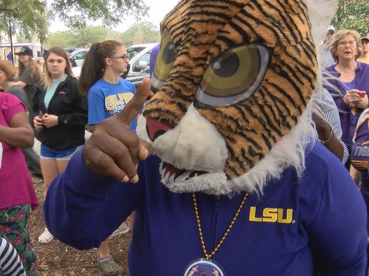 LSU Tiger fans celebrate championship win at parade.