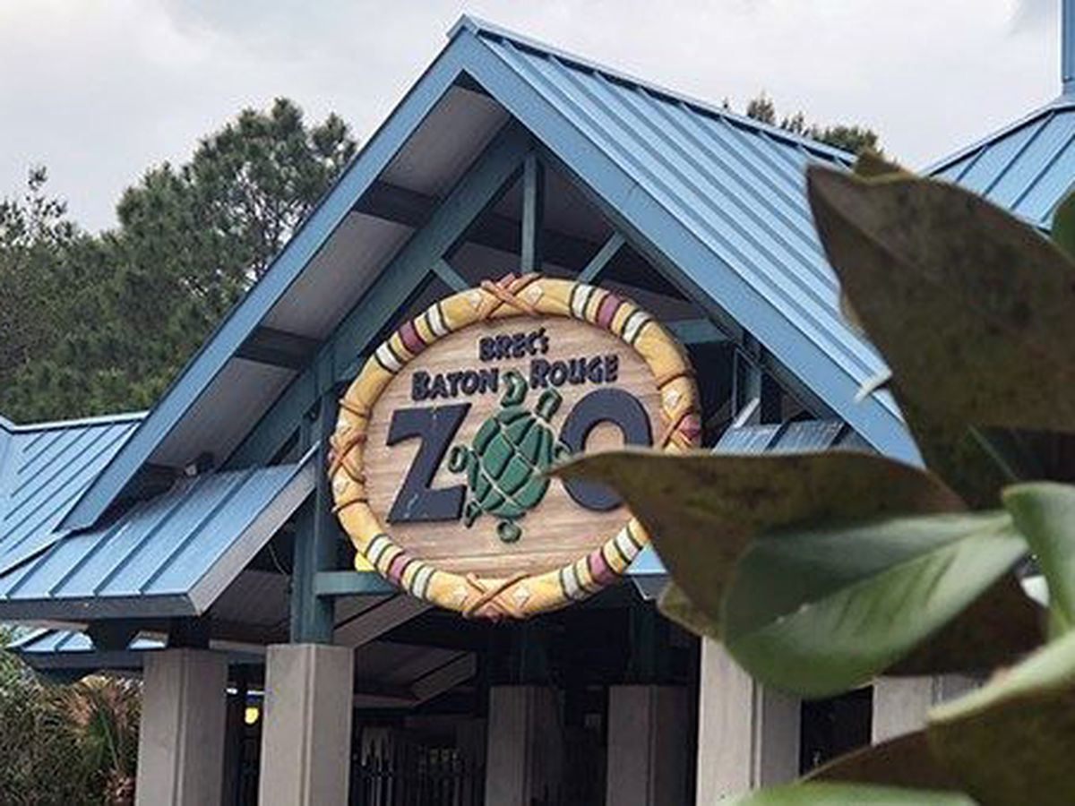 Public invited to open meetings for BREC's Baton Rouge Zoo and Greenwood Community Park master plan