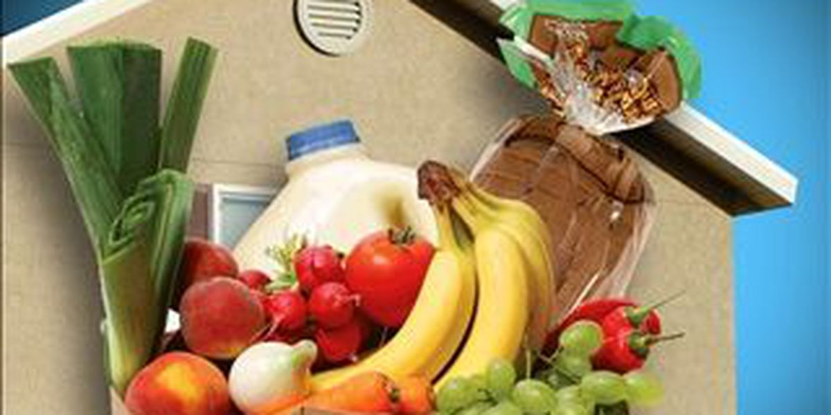Healthy BR and partners address 'food insecurity'