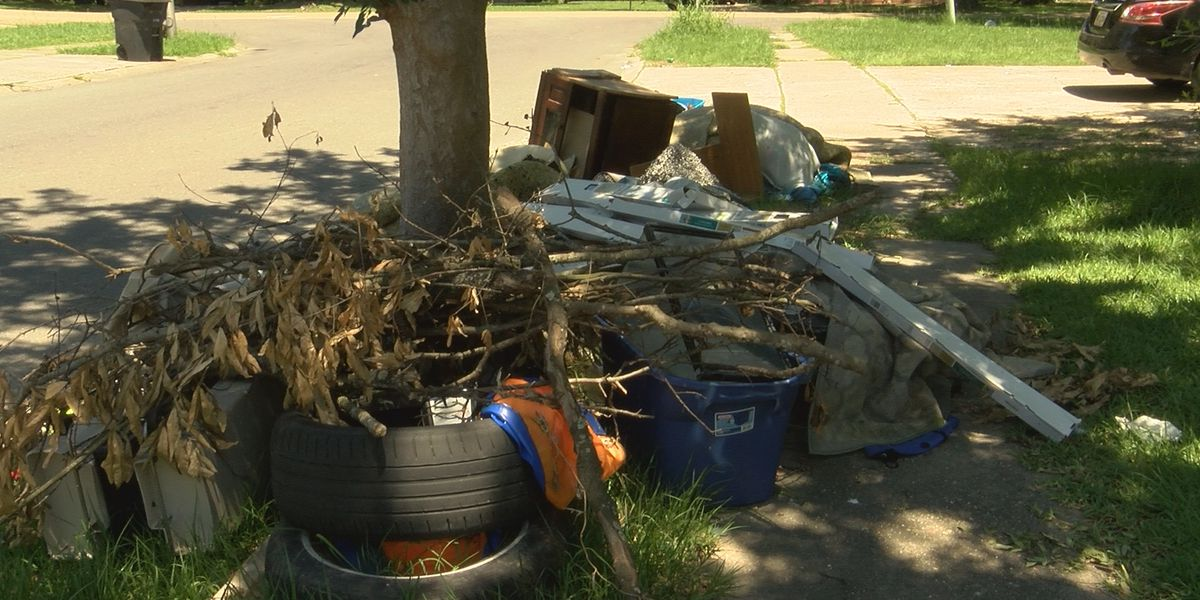 EBR city-parish says they will not remove all debris from curb