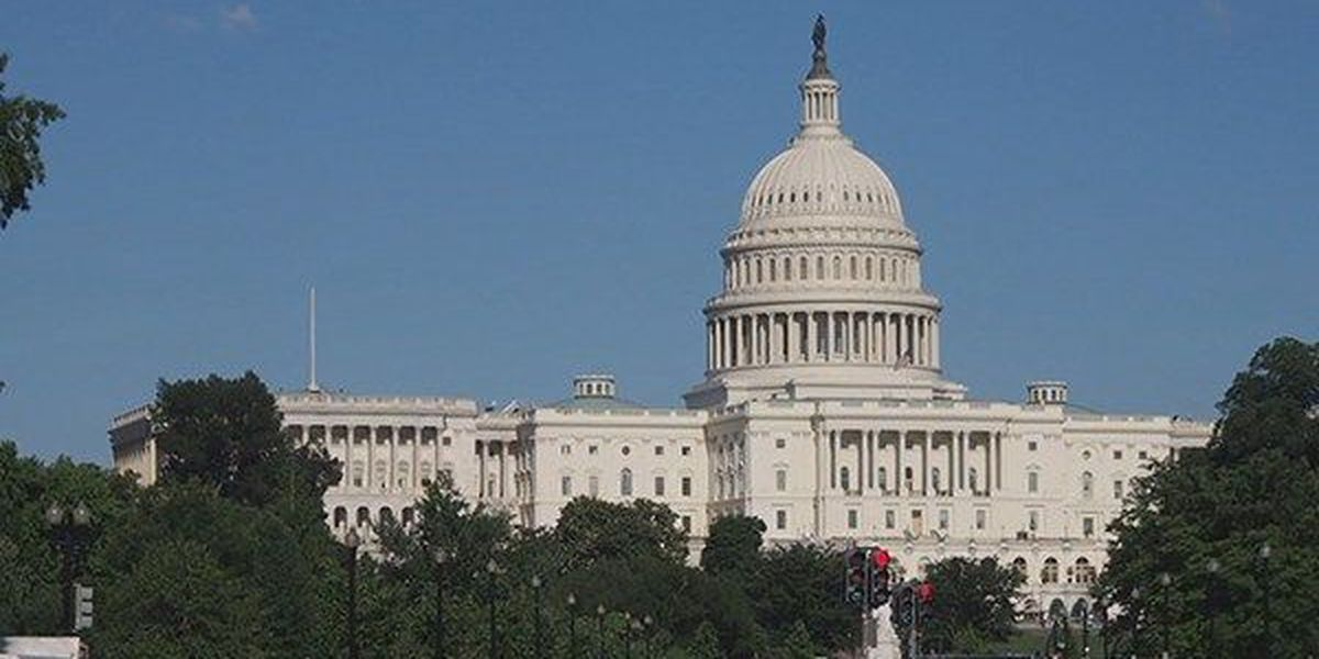 Members of Louisiana congressional delegation comment on Syrian attack