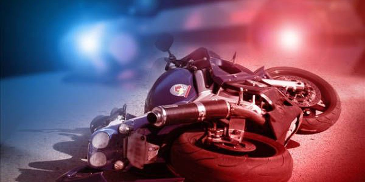 Motorcyclist dies after colliding with big rig truck