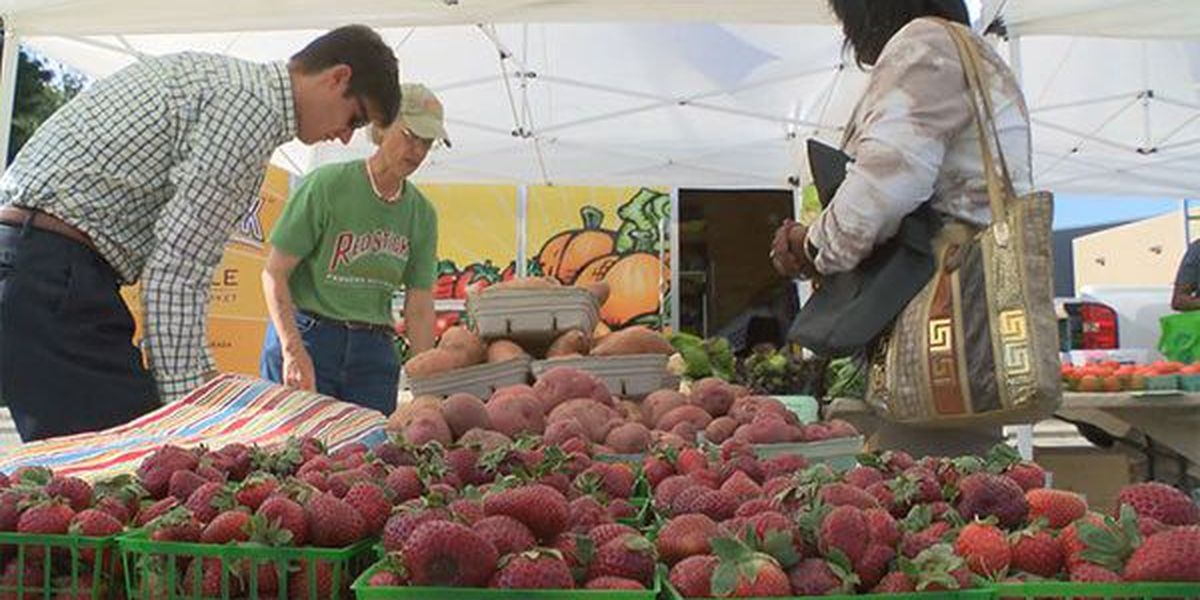Tough year for farmers highlight of Louisiana's Agriculture Day