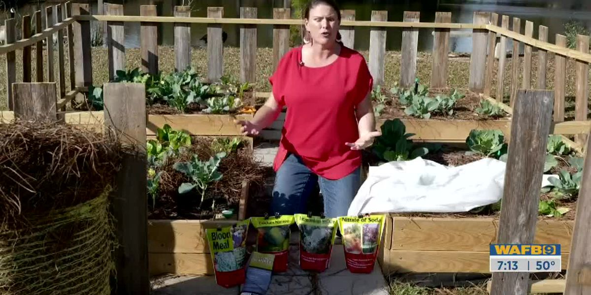 GET IT GROWING: How to extend the life of your vegetable garden