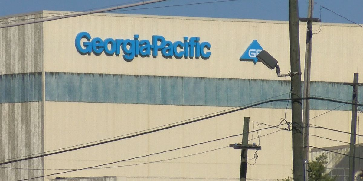 Georgia-Pacific to dismiss 650 workers at Port Hudson paper mill